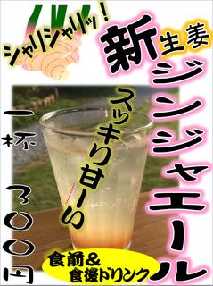 ShinSyougaGinjerAlePOP20180523.png