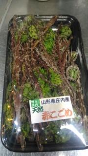 Akakogome20190430.jpg